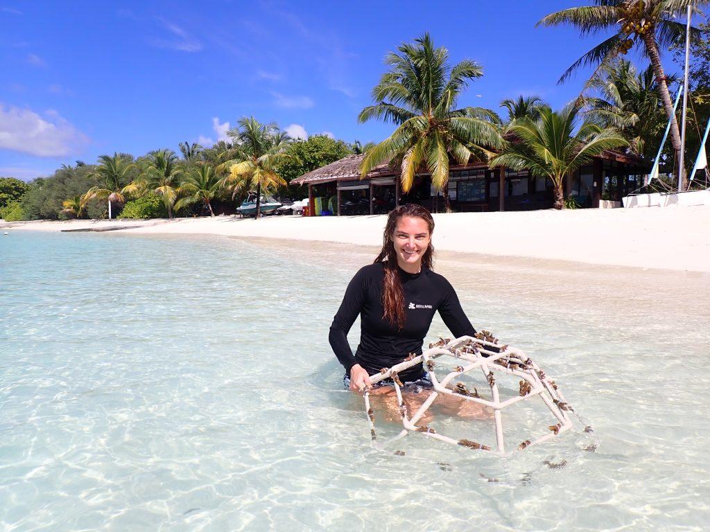 Adopt a Coral - Sheraton maldives