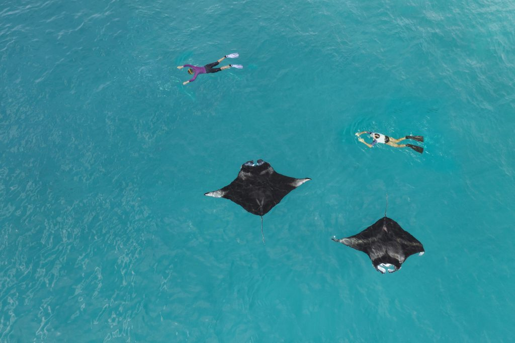 Westin Maldives 0964_3 (1)