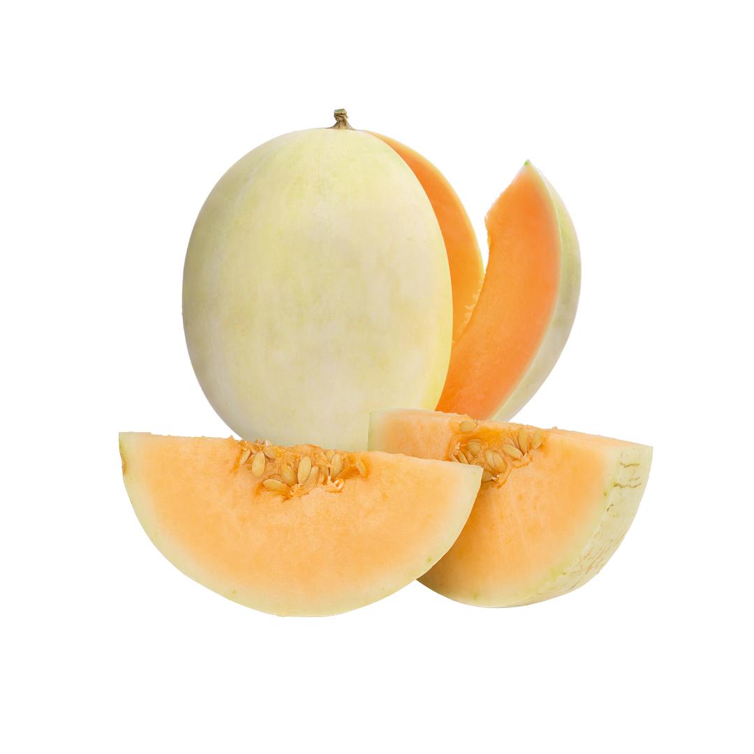 Sunlady Melon