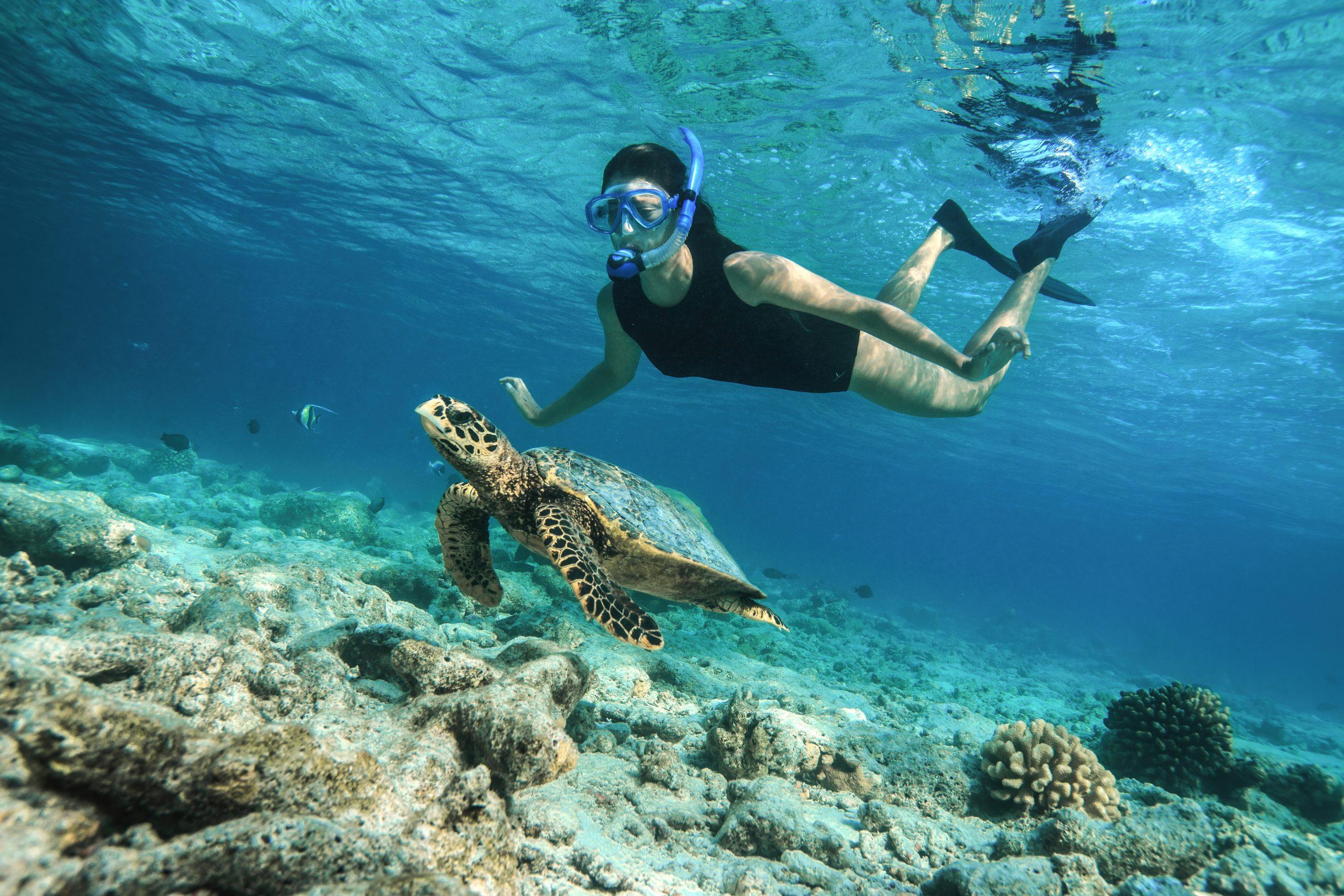 Baros Maldives_Underwater_Lifestyle (11)