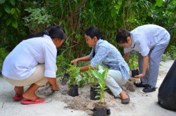 Tree planting at Centara Grand