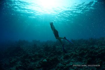 Free-diving-1
