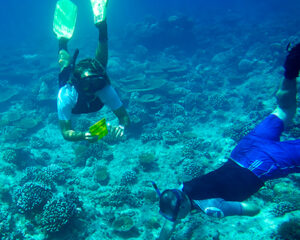 LuxMaldivesCoral-Reef