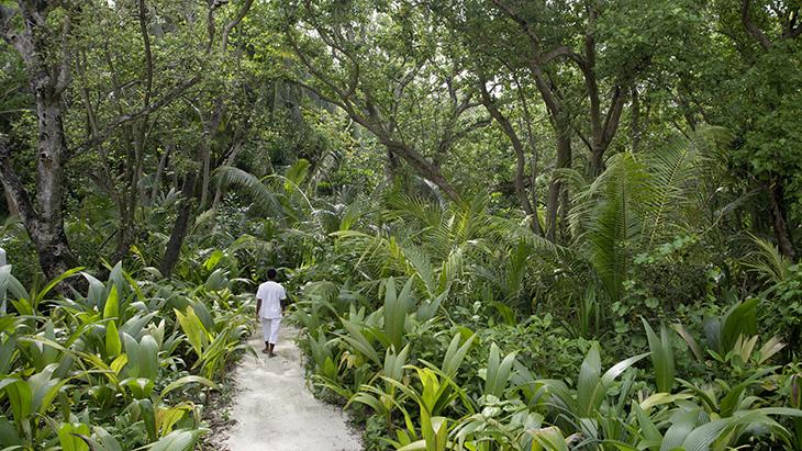 Soneva Fushi pathway by Antonina Gern 3